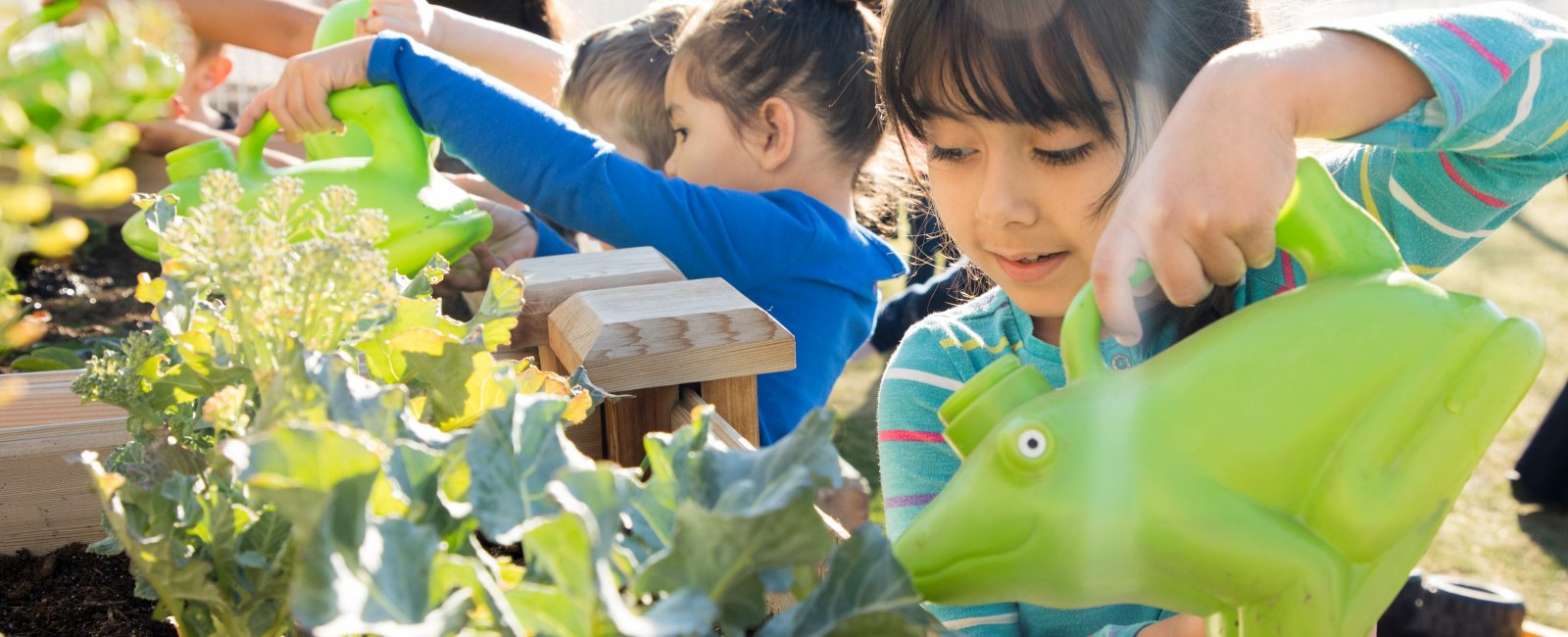 Children water greens as part of HonorHealth Desert Mission's gardening education.