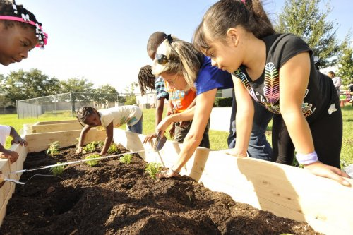 Orange Center Elementary School's Healthy Living Garden creates an interactive venue for teaching students about good food choices and for promoting overall health and wellness.
